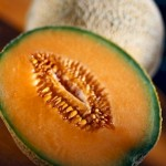 Contaminated Cantaloupes