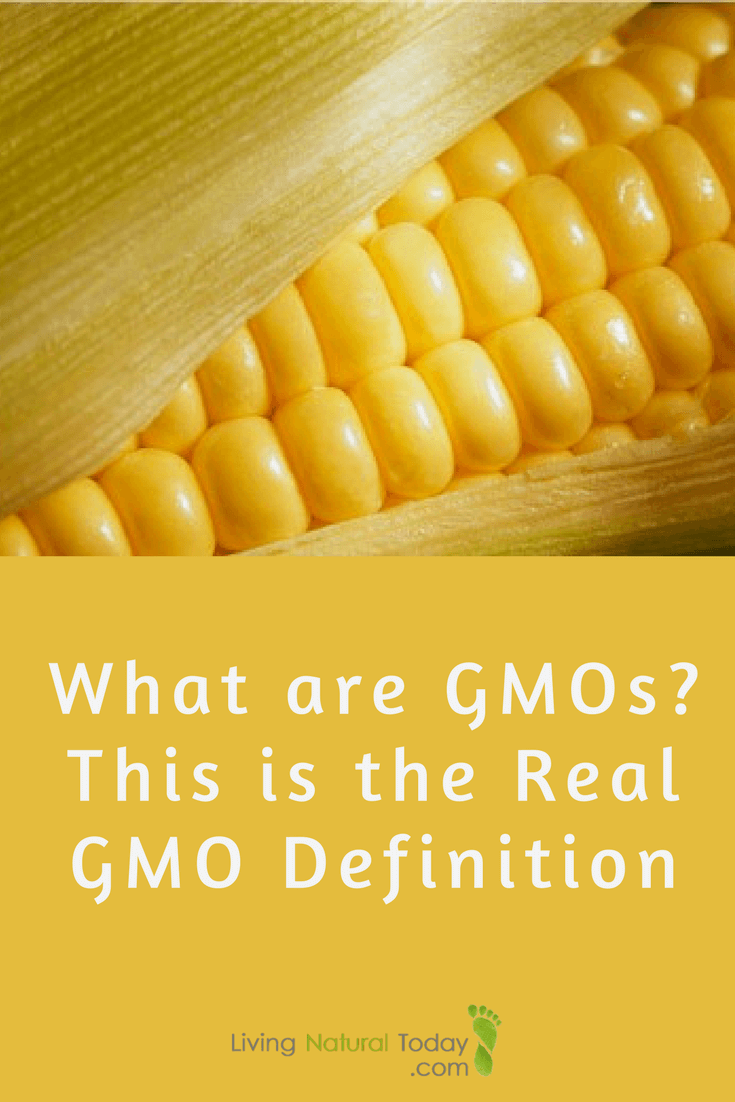 what are gmos? this is the real gmo definition