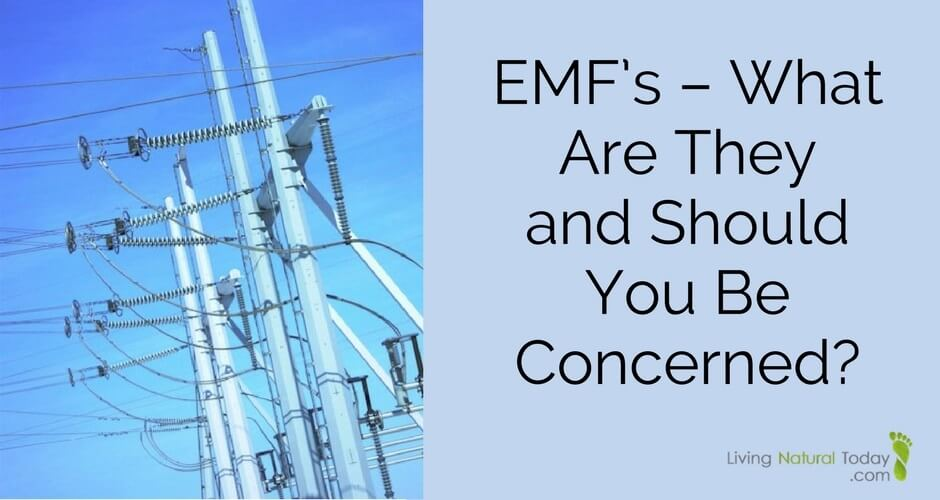 Are You Being Zapped By Emfs