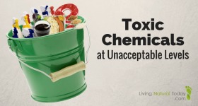 Toxic Chemicals at Unacceptable Levels