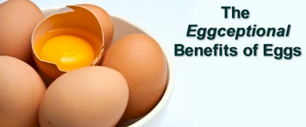 The Benefits of Eggs
