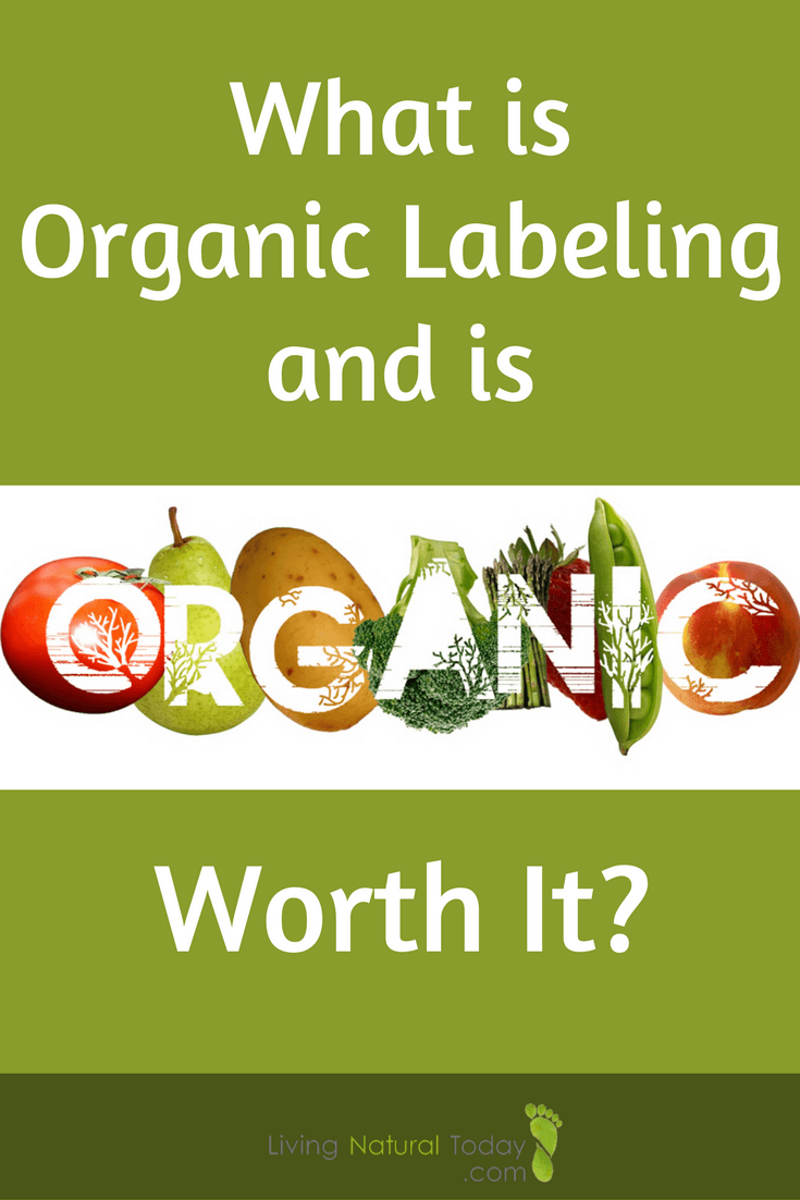 organic definition