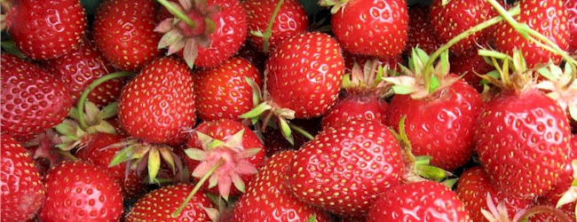 The Benefits of Eating Seasonally:  Our Royal Fruits of Spring!