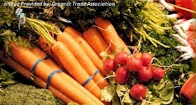 Organic Industry Growth