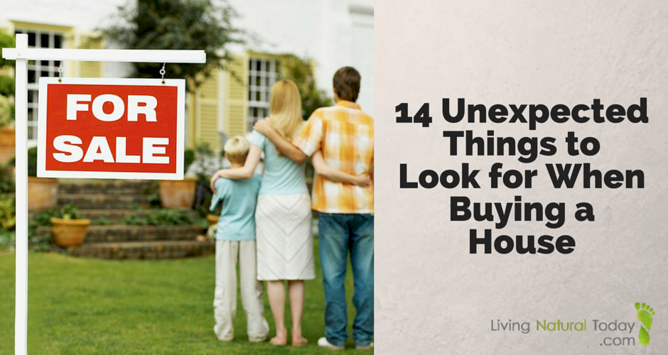 14 Unexpected Things to Look for When Buying a House