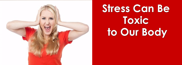 Stress Can Be Toxic to Our Body