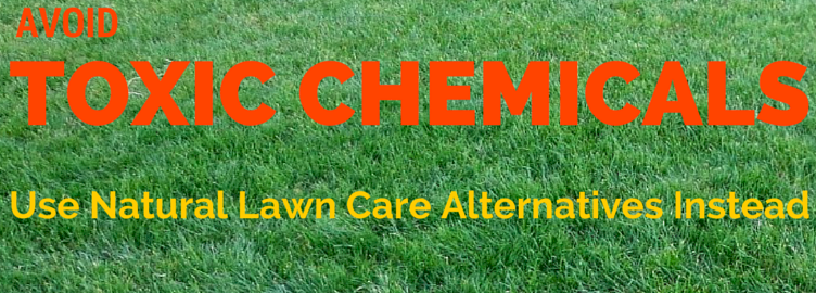 Avoid Toxic Chemicals! Use Natural Lawn Care Alternatives Instead