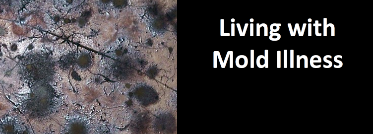 Living with Mold Illness