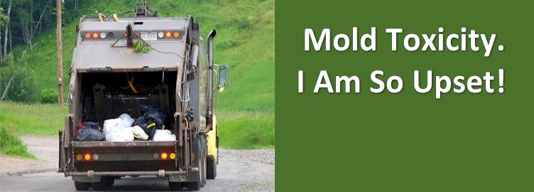 Mold Toxicity. I Am So Upset!