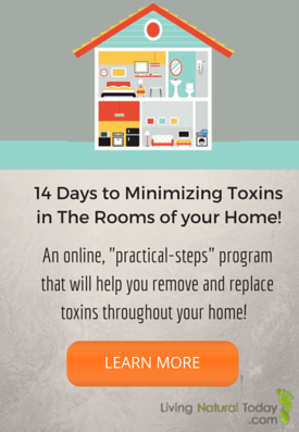 Minimize Toxins Program