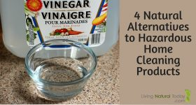 4 Natural Alternatives to Hazardous Home Cleaning Products