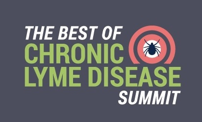 chronic lyme disease summit