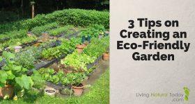 3 Tips on Creating an Eco-Friendly Garden