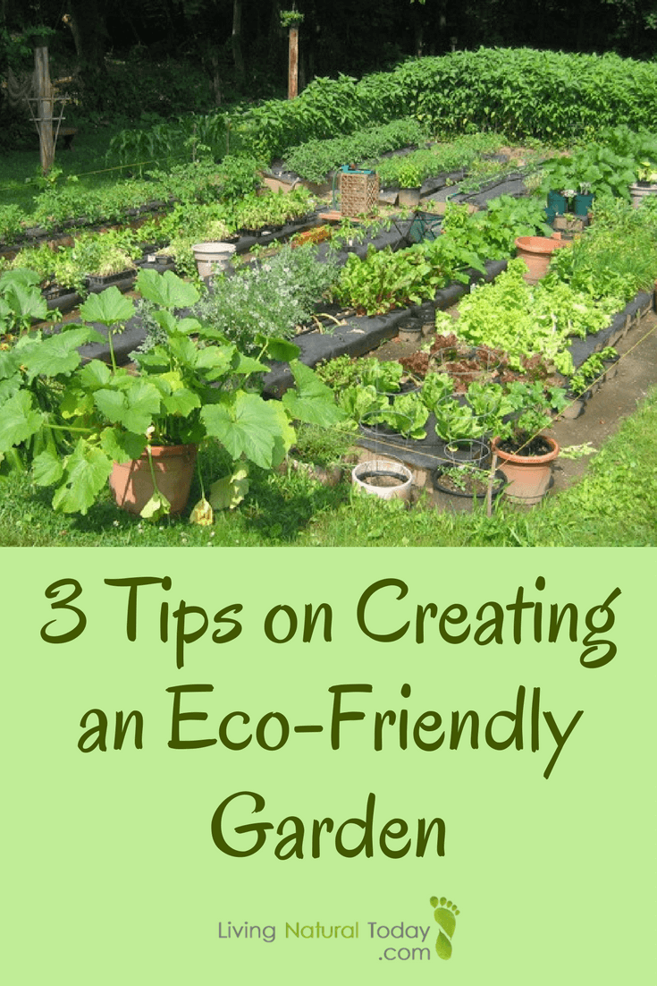eco friendly garden