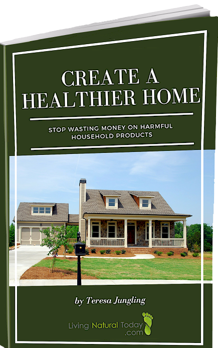 healthy home guide