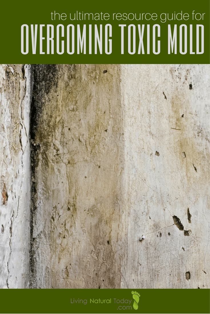 Ultimate Resource Guide For Overcoming Toxic Mold