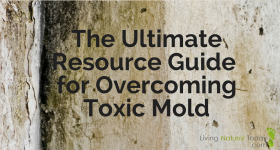 The Ultimate Resource Guide for Overcoming Toxic Mold