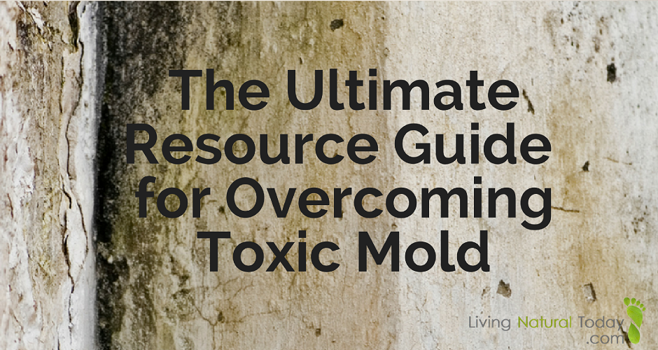 Guide for Overcoming Toxic Mold