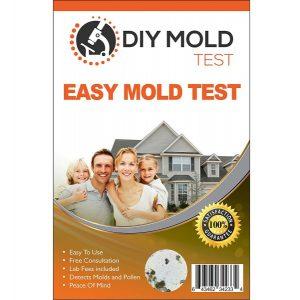 DIY Mold kit