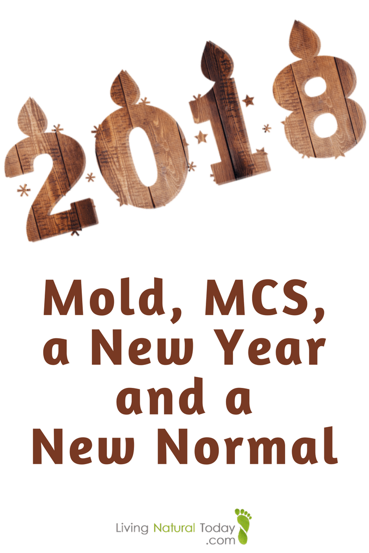 Mold, MCS, a New Year and a New Normal 1