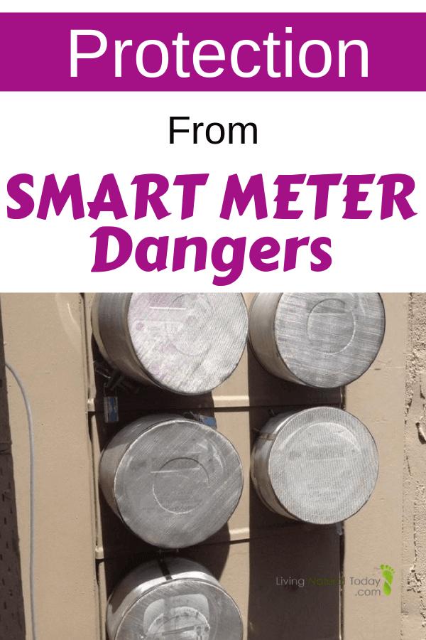 smart meter guard