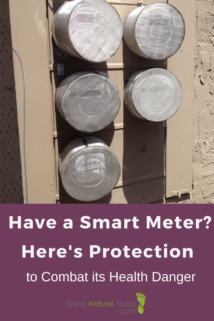 Want Protection From Your Smart Meter Try This Smart