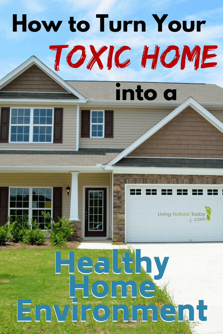 Toxic Home Environment