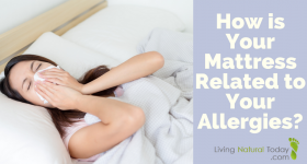 How is Your Mattress Related to Your Allergies?