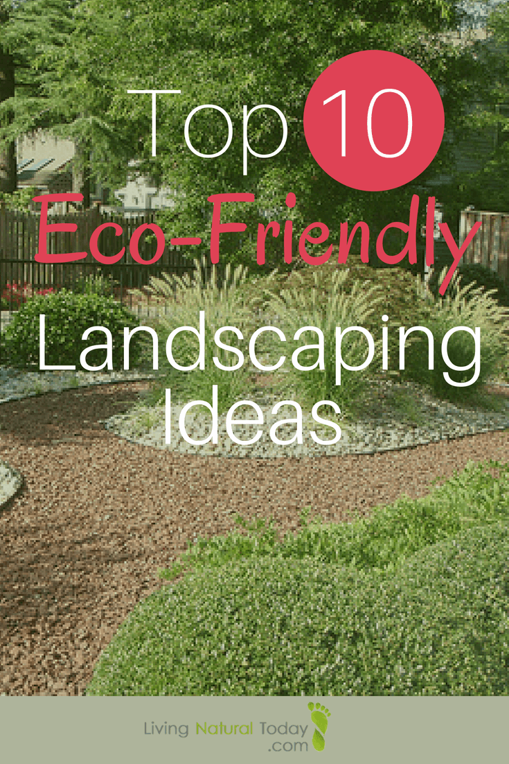 eco-friendly landscaping ideas