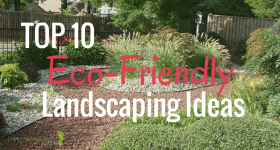 Top 10 Eco-Friendly Landscaping Ideas
