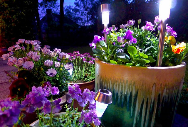 Use solar lighting in your eco-friendly landscaping