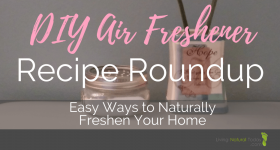DIY Air Freshener Recipe Roundup: Easy Ways to Naturally Freshen Your Home
