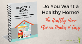 Do You Want a Healthy Home? The Healthy Home Planner Makes it Easy