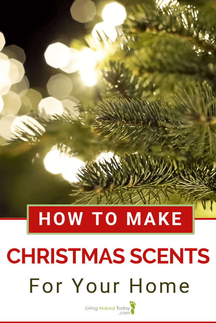 Christmas scents DIY