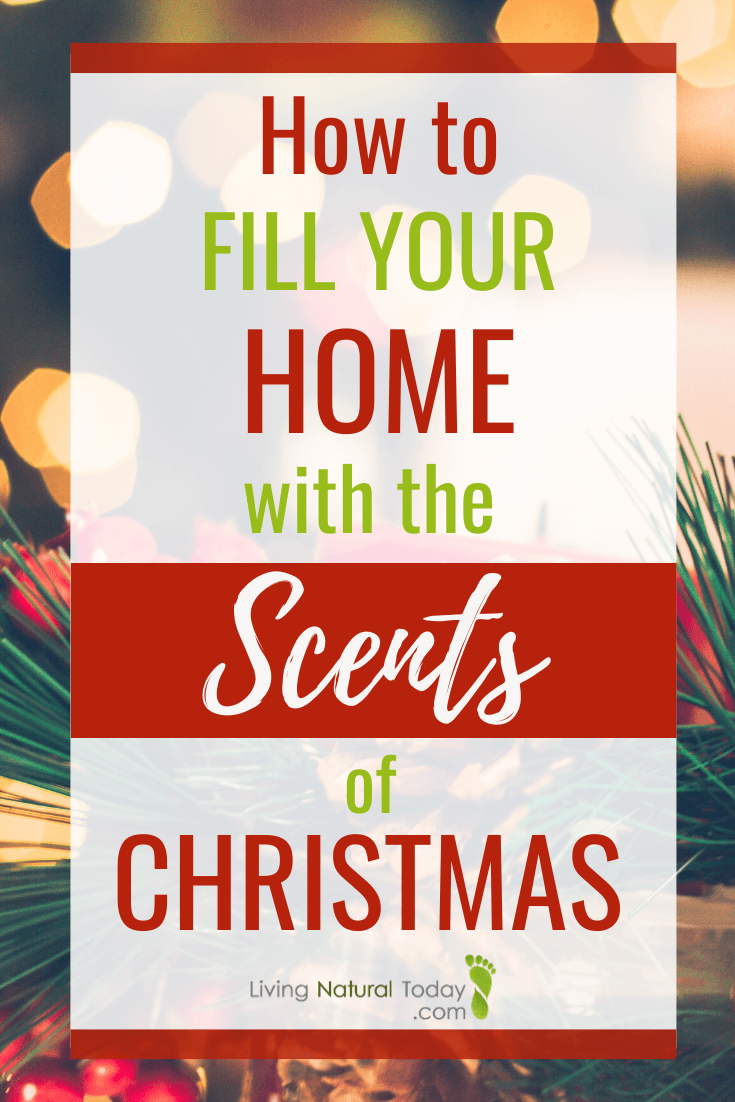 christmas scents
