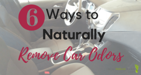 6 Ways to Naturally Remove Car Odors