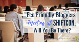 eco-friendly bloggers