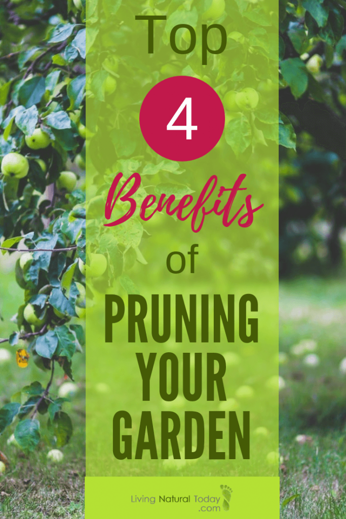 benefits of pruning