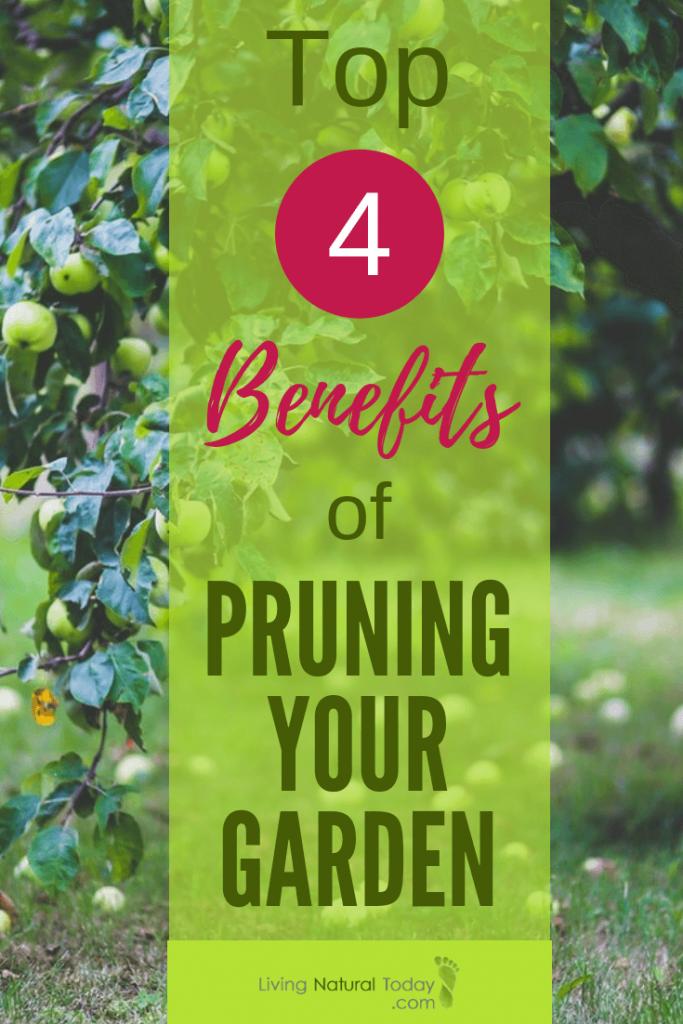 benefits of pruning