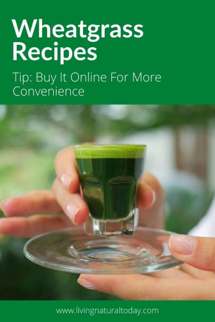 wheatgrass recipes