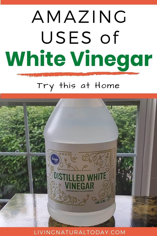 uses of white vinegar